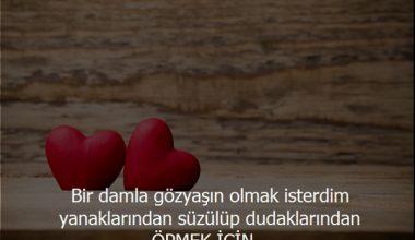 Kısa Aşk Mesajları