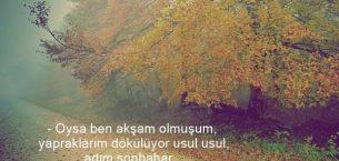 Sonbaharlı Sözler