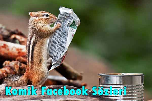 Komik Facebook Sözleri