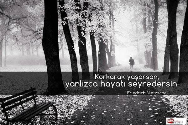 Friedrich Nietzsche Sözleri