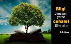 Bilgi İle İlgili Sözler